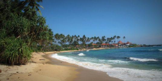 Large Beach Plot for Sale in Dikwella