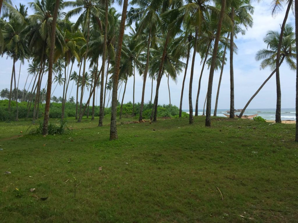 Beachfront property close to Galle