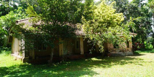 Tranquil and Peaceful Property in Unawatuna