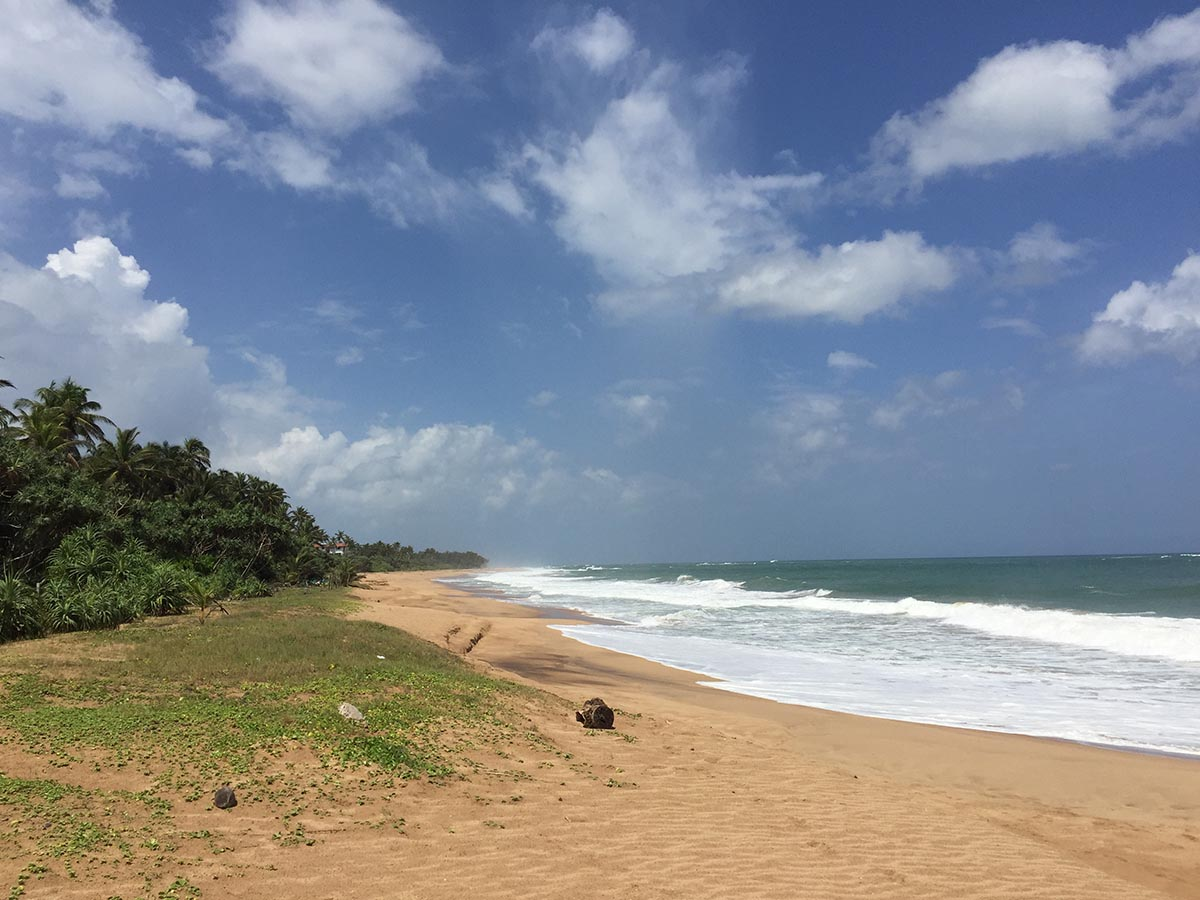 Beachfront land – Weligama