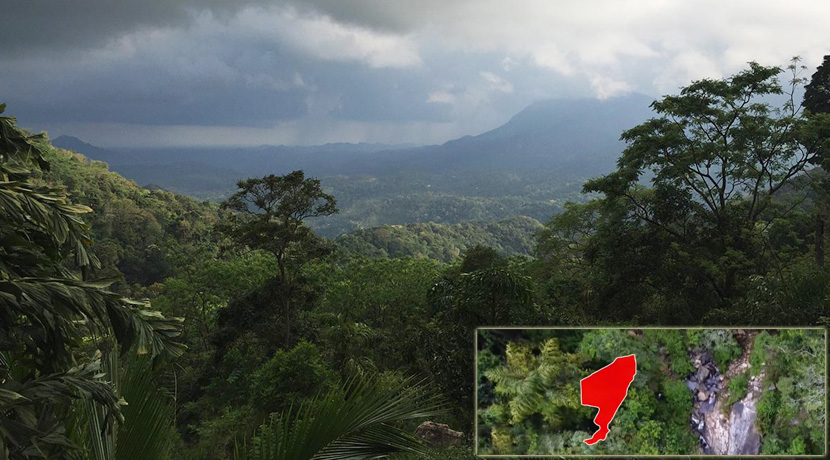 Stunning 18.5 acres of rain forest land with waterfall – Ella