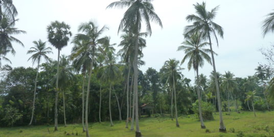 4 Acres land with uninterrupted views