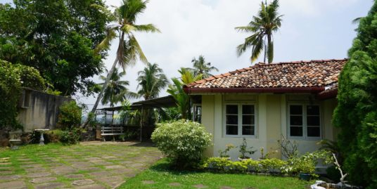 Upper Dickson Road/Commercial property