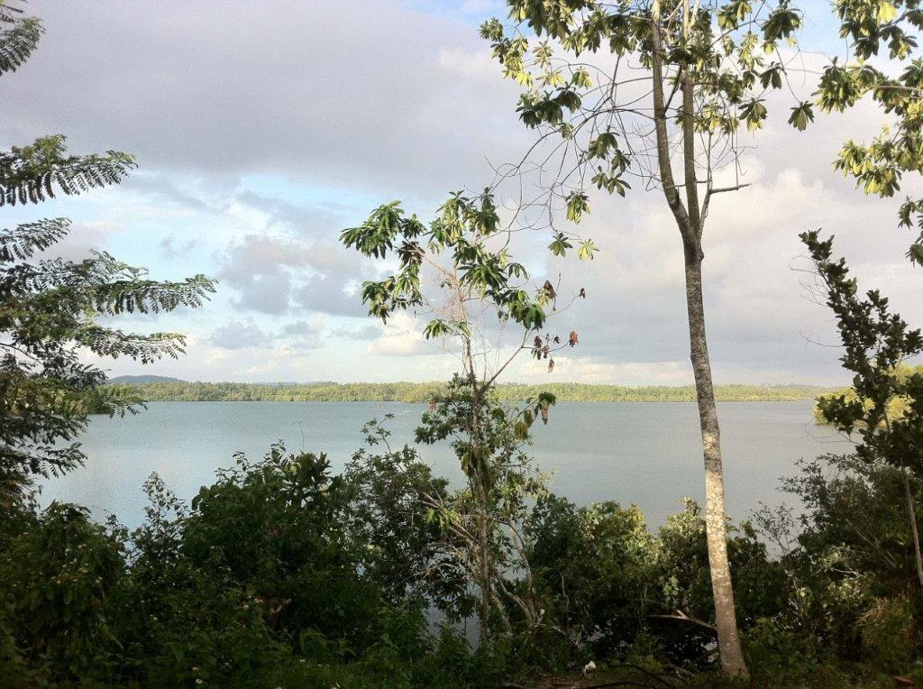 Lake view, bird life and cool breezes