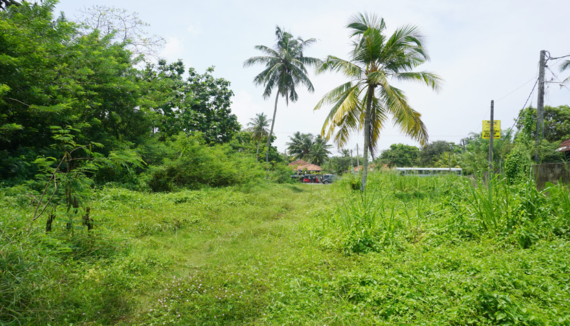 Bare Land in the heart of the tourist area of Mirissa