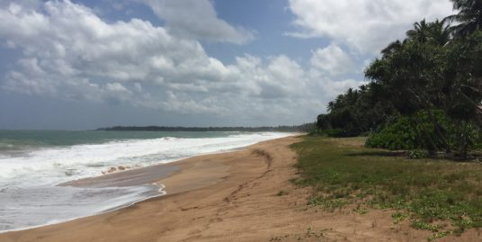 Beach front land in Tangalle