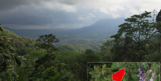 Ella – 18.5 acres of rain forest land with waterfalls