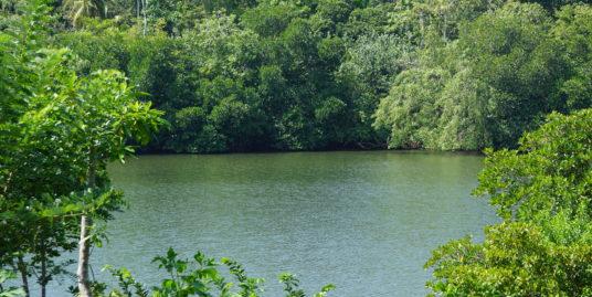 Koggala Lakefront bare land