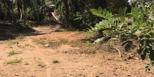 Vacant plot for development