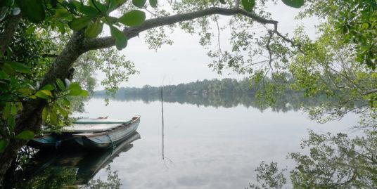 Koggala Lake a rare opportunity