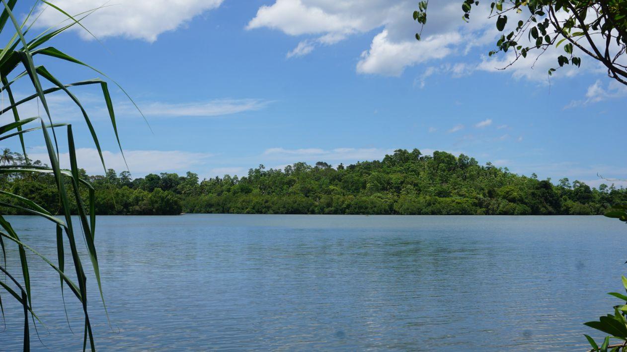 Koggalla lake front with paddy field views