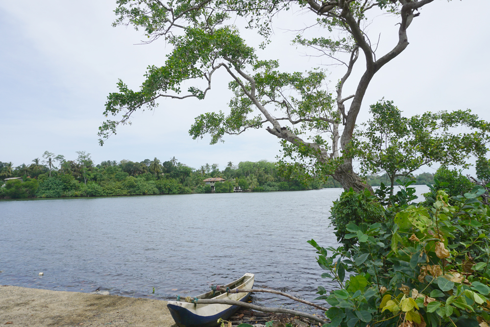 Koggala Lake bare land