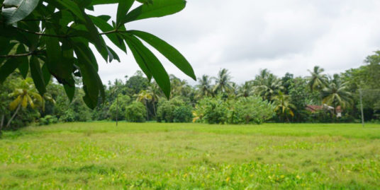 Meepe Vacant Land