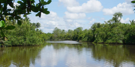 River frontage vacant land