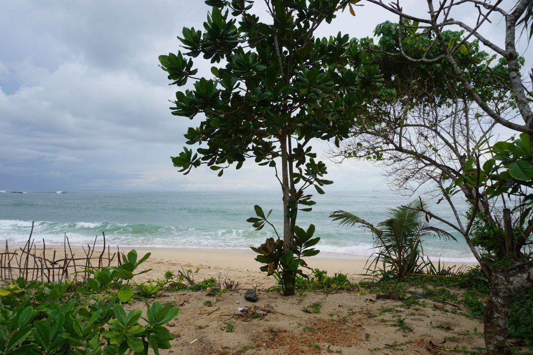 54P prime beach front land