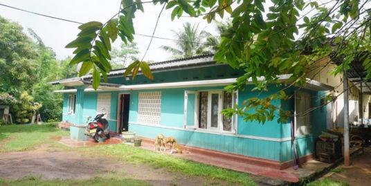 Weligama village living