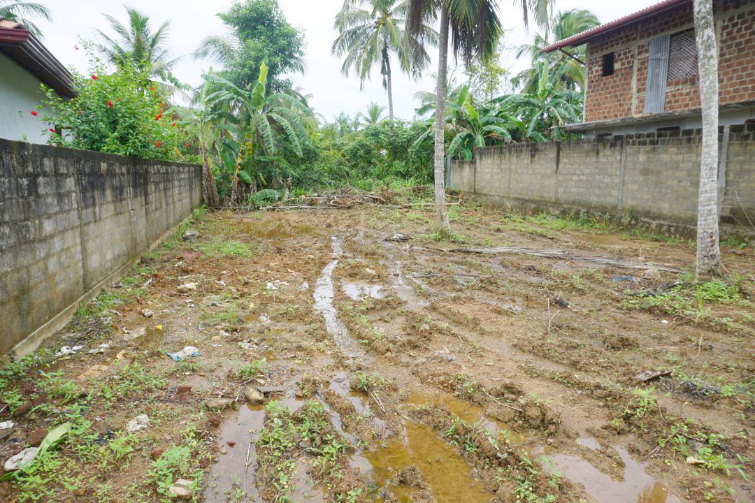 Vacant Land ready for development