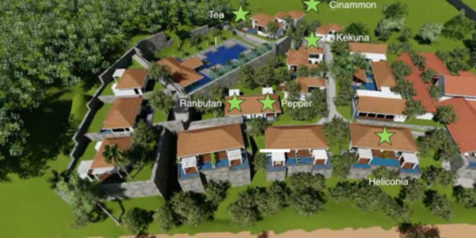 The Plantation – luxury villas
