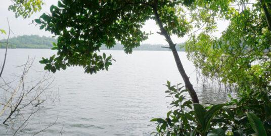 68 Perch Koggala Lake land