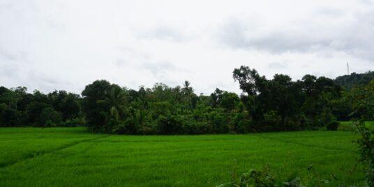 Paddy island land with 360° views