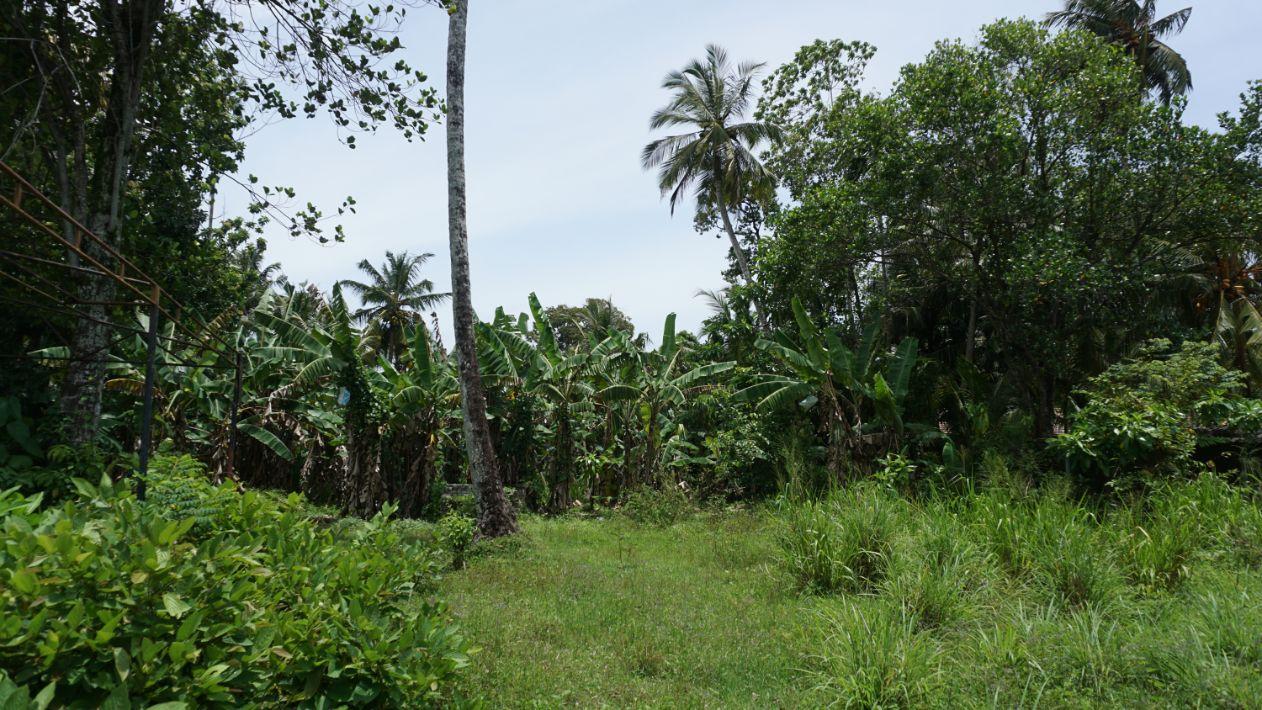 Vacant land Kabalana