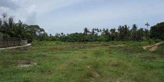 Kabalana large vacant land