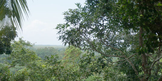 5.3 Acre elevated land coastal and paddy views