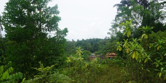 Ginigala Elevated land with views