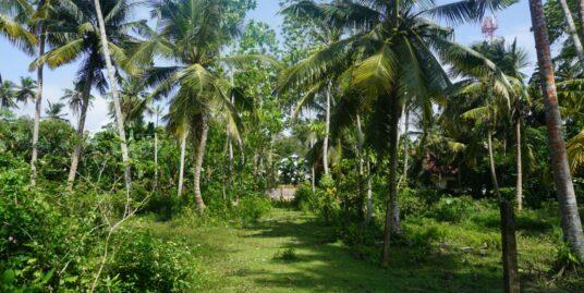 Habaraduwa land for sale