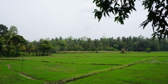 Ahangama house with paddy views