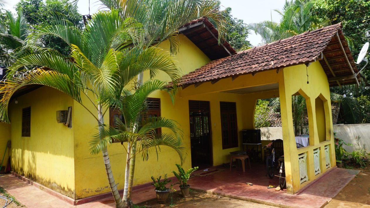 Meepe paddy view house and land