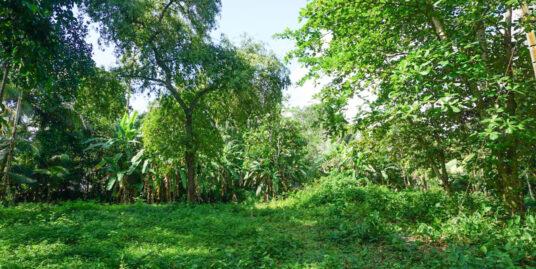 Unawatuna inland vacant land