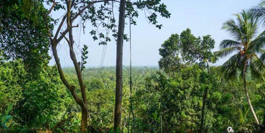 Habaraduwa Sea view property