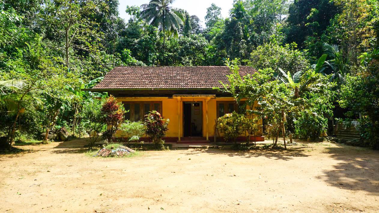 Habaraduwa paddy views with small house