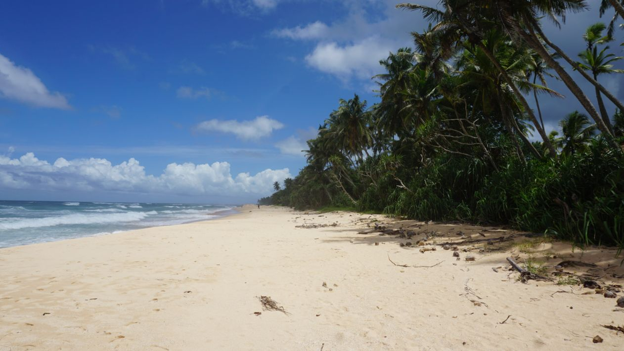 Habaraduwa beach front vacant land