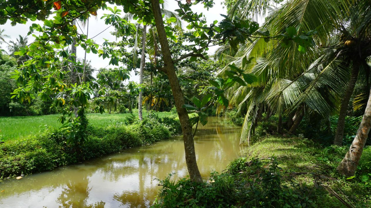 Ahangama land 4km from the beach